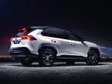 Фото Toyota RAV4 Hybrid кормовая часть