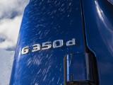 Шильдик G350d на кузове